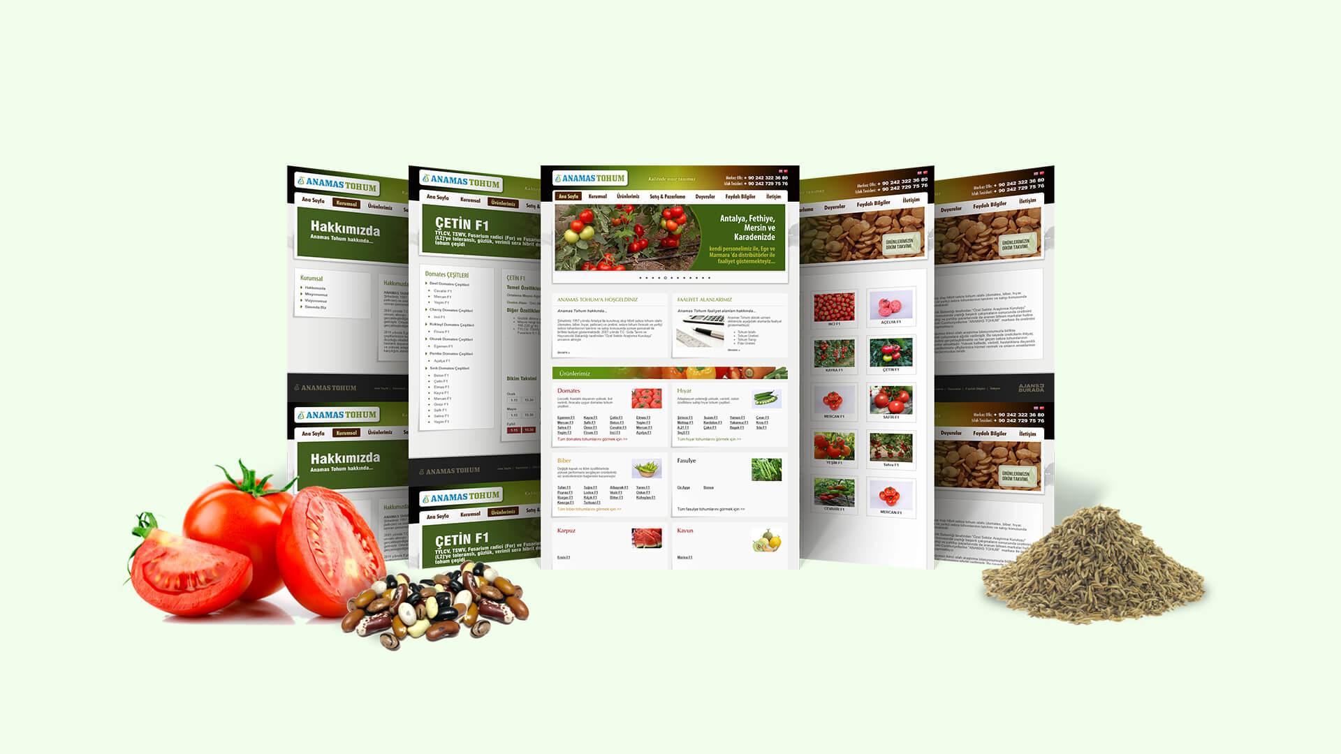 Anamas Tohum / Web Sitesi Tasarımı
