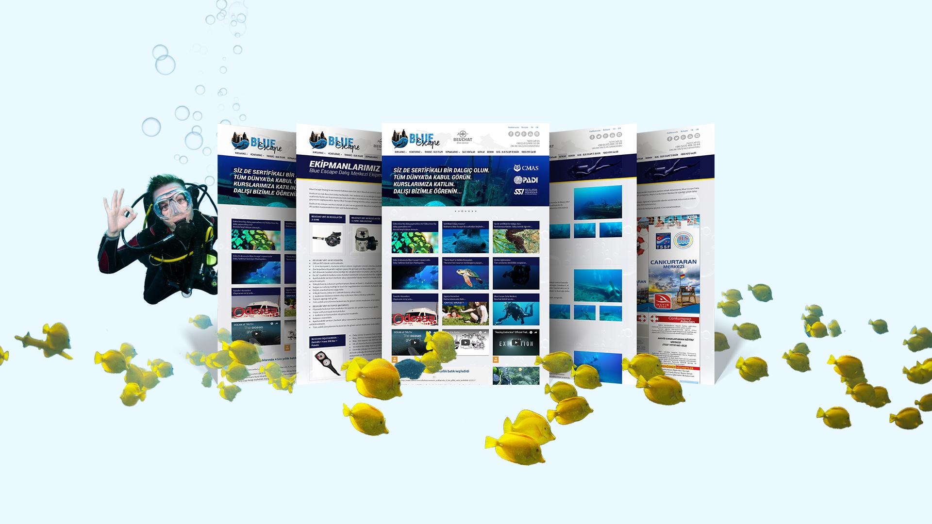 Blue Escape Diving / Web Sitesi Tasarımı
